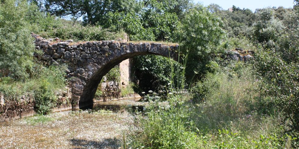 Ponte das quebradas