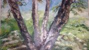 Continuar... Exposição de pintura de Manuela Daniel na Biblioteca