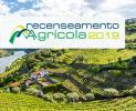 Continuar... Recenseamento Agrícola 2019