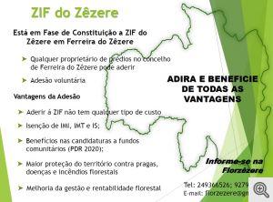 ZIF do Zêzere